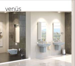 المراحيض-الاوربية-European-water-closet-14-300×264