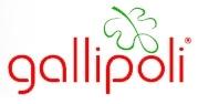 Gallipoli İç Giyim